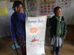 human-body-chart
